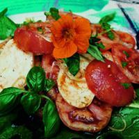 Tomatsalat med fersk mozzarella og balsamicoeddik -