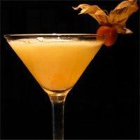 Apricot Lady -