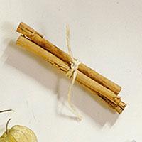Plommesyltetøy med kanelstang -