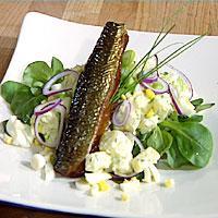 Røkt fisk med potet- og eggesalat -
