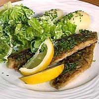 Stekt makrell, salat med rømmedressing -