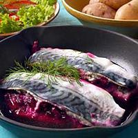 Rødmende makrell -