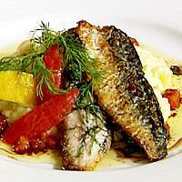 Stekt makrell med dill servert med sennepsstuede poteter og vårløk -