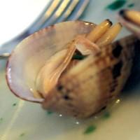 Almejas med persille -