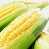 Maissalat -