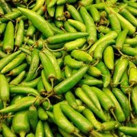Grønn currypasta -