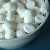 Marshmellowsalat -