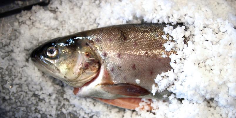 Saltbakt fisk - Det er så superduperenkelt at det er en lek! Prøv gjerne med fjellaure.