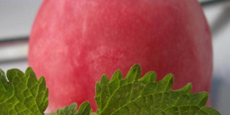 Forfriskende vannmelonsorbet - Enklere blir det ikke.