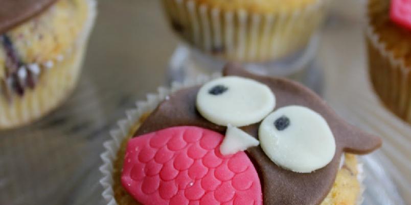 Blåbærmuffins med ugler - Sjekk disse deilige blåbærmuffinsene med morsom uglepynt!